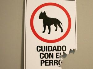 Los 10 mejores perros guardianes para proteger nuestras casas